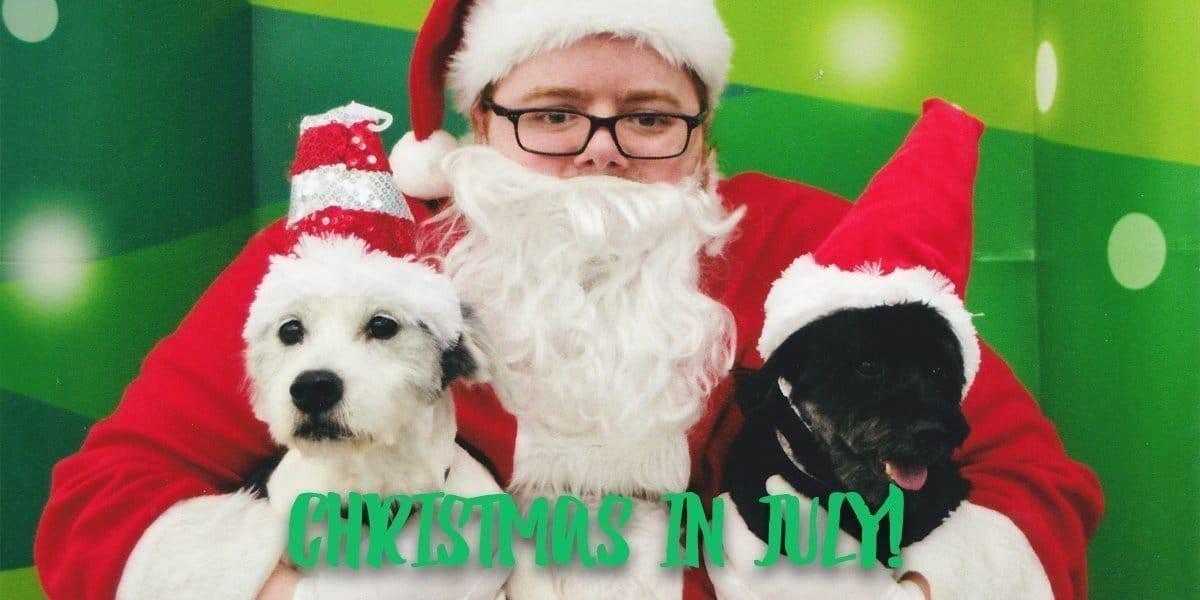 Christmas Card Ideas for Empty Nesters