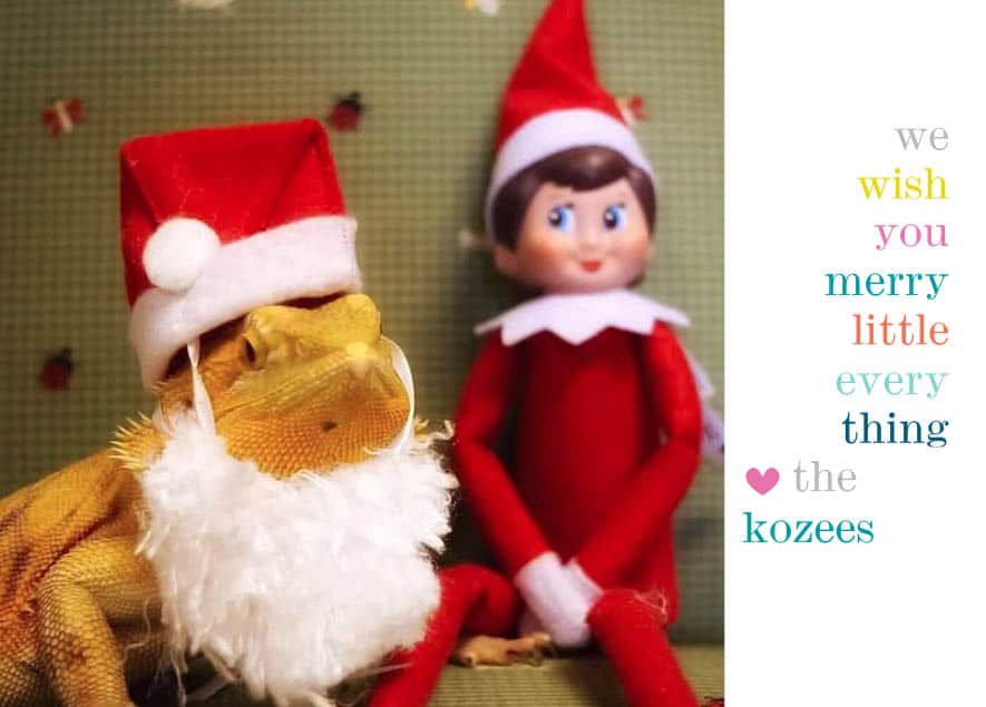 Christmas Card Ideas for Empty Nesters 8