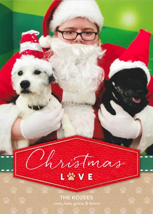 Christmas Card Ideas for Empty Nesters 4