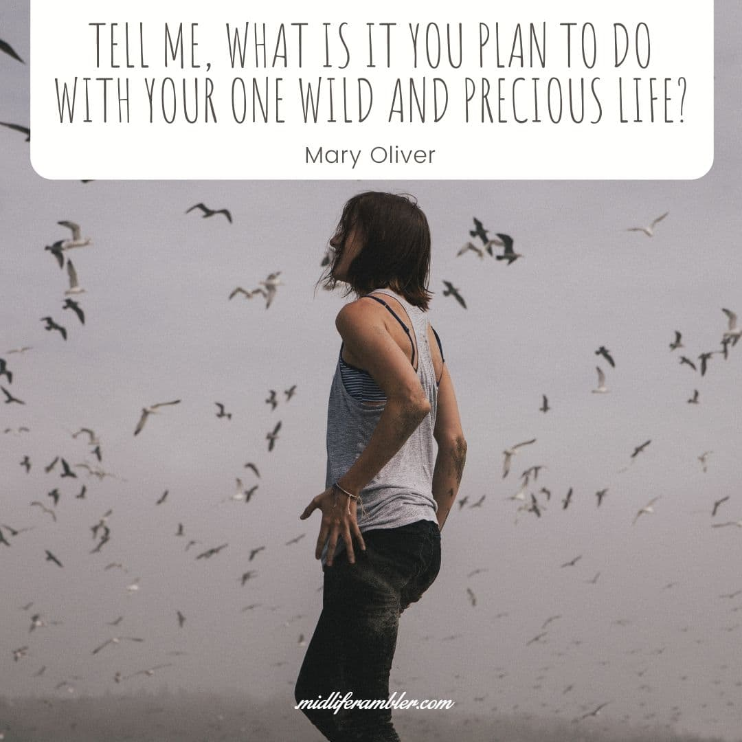 55 Inspirational Quotes for Your Vision Board - Tell me, what is it you plan to do with your one wild and precious life? - Mary Oliver