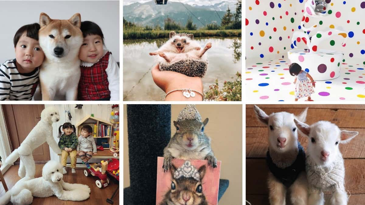 Instagram Accounts to Follow for Self-Care