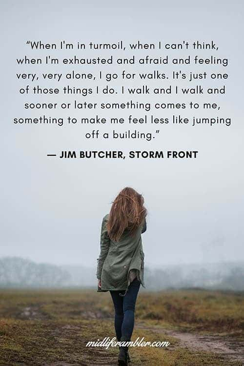 When I'm in turmoil, when I can't think, when I'm exhausted and afraid and feeling very, very, alone, I go for walks. - Jim Butcher Quote